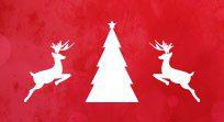 Dezzo Roofing Christmas Tree & Reindeers