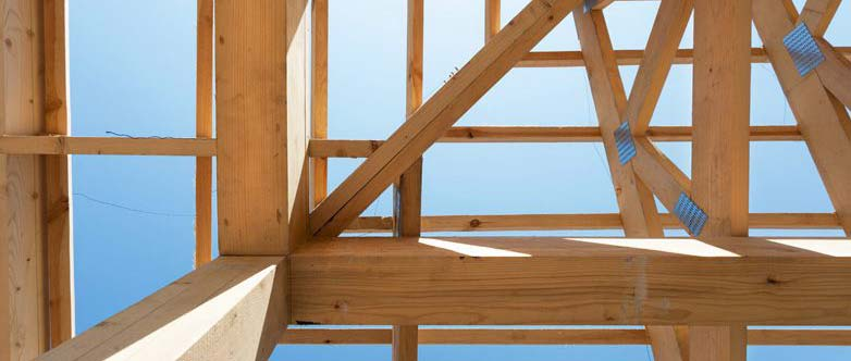 Healthy Roof Truss